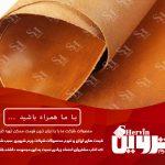 تولید و صادرات چرم پوست